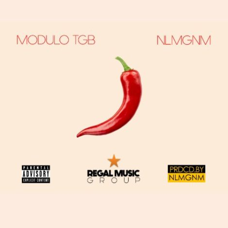 Modulo TGB X NLMGNM – Shito (Prod. By NLMGNM)