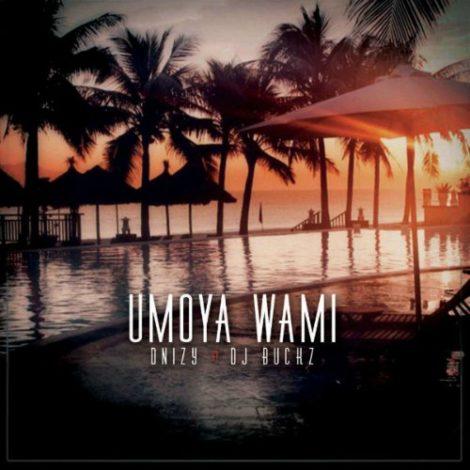 Dnizy x DJ Bucks – Umoya Wami