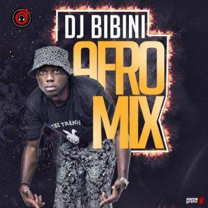 DJ Bibini - Afro Mix